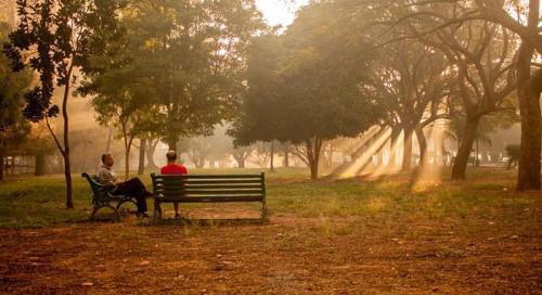 Sunny-park